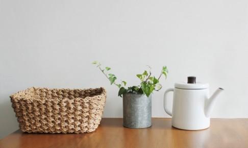 カゴと植物